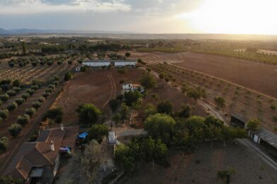 drone shot od the springs homestead