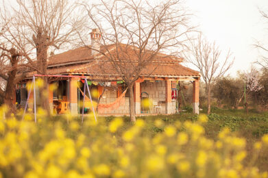 The cosy family home at the springs homestead