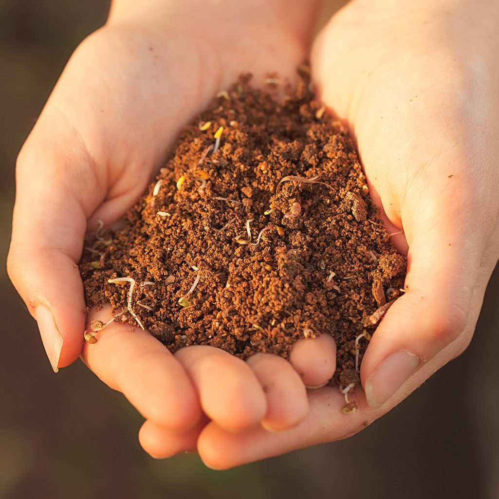 hands holding soil cared for with organic methodologies